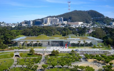Science writing tips for California Academy of Sciences workshop